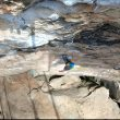 Austin Howell 'freesoloist' escalando en solo integral