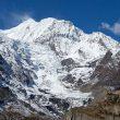 Gangapurna (7.455 m)