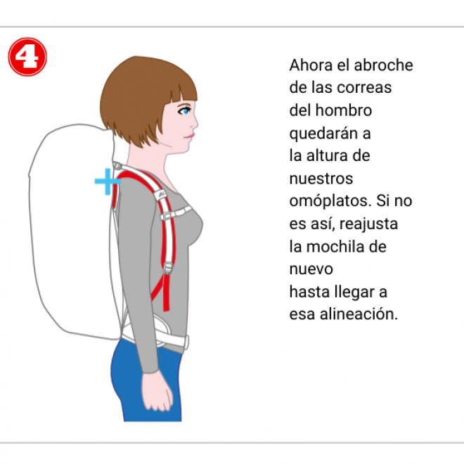 Ajuste de las correas del hombro