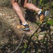 Zapatillas adidas TERREX Agravic Flow