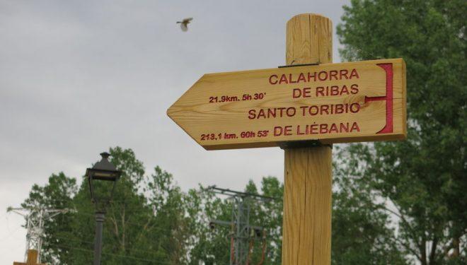 Señales del Camino Lebaniego cerca de Grijota