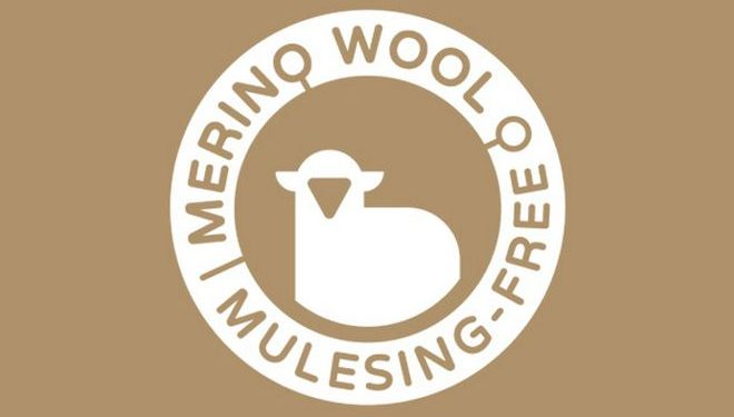 Mulesing Free - Lana Merino