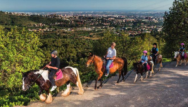 Rutas a caballo por los pinares del Maresme