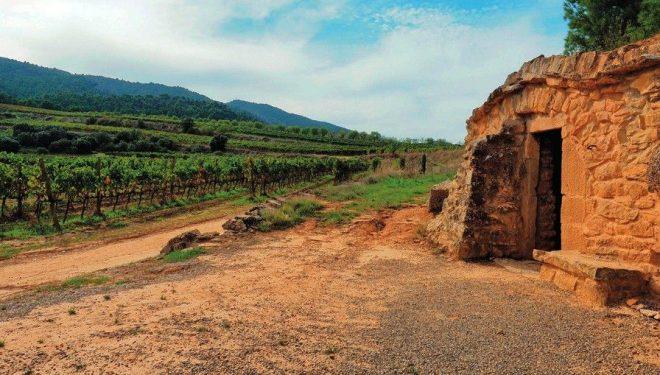 Cabaña de piedra seca en Les Garrigues. ©Ignasi Merino