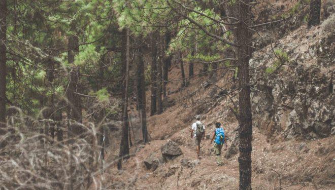 TURISMO ACTIVO. Gran Canaria Natural & Active.