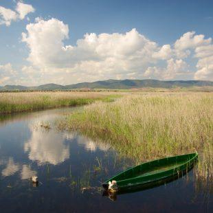 Parque Nacional de las Tablas de Daimiel.