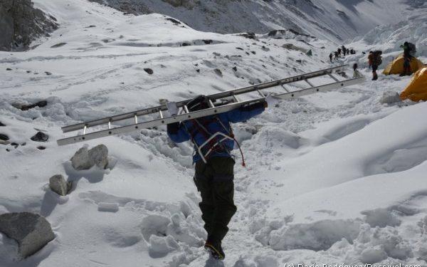 Campo Base del Everest 2011.Un sherpa portea una escalera (¡20 kilos!) en el campo 2 hacia el campo 3.  (©Darío Rodríguez/DESNIVEL)