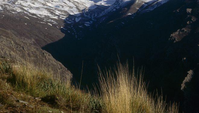 Sierra Nevada ya figura entre las áreas naturales mejor protegidas del planeta.  (L. Ordóñez/Desnivelpress.com)