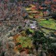Panorámica de las riberas del Lor llenas de castaños ya sin hojas. Ruta de Soutos del Valle de Lor  (Víctor Barro)