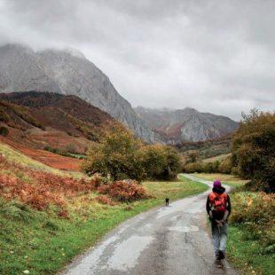 El inicio de la ruta del Valle de Lescun transcurre entre pequeños bosques y prados