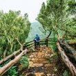 El Parque Nacional de Garajonay es uno de los enclaves que atraviesa el Camino Natural Cumbres De La Gomera.  ()