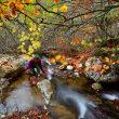 Llenando la cantimplora en el arroyo Palanco.  (Anxo Rial)