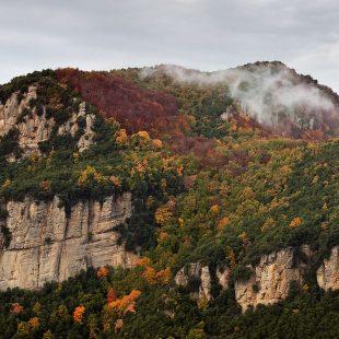 El camino de la cima del Puigsallança asciende la vertiente sureste por la franja boscosa que llega hasta la misma cima.  (Jordi Longás)