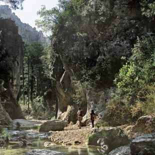 El desfiladero de Matarraña ofrece lugares naturales de gran atractivo y un paisaje montañoso de abruptas formaciones calizas y bosques de pino.  ()