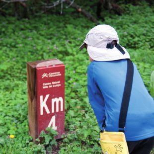 Un niño observando uno de los postes indicativos del Camino Natural del Lozoya  (FRANCISCO JOSÉ LADO)