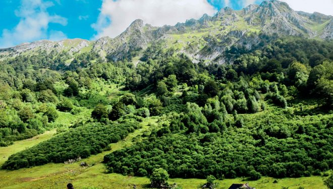 Parque Natural de Redes  (MAR MUÑOZ ARRUE)