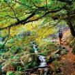 Parque Natural de Redes es una caja llena de sorprendentes rincones y siempre el agua presente.  (Javier R. Vázquez De Aldana)