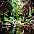 En el Camino de la Cruz se alternan paisajes verdes y otros más secos