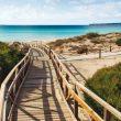 En las zonas dunares se han instalado pasarelas para evitar la degradación de las dunas, como en la playa de Migjorn