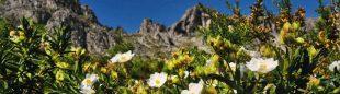 La Vall de Pop reúne un notable patrimonio cultural y natural