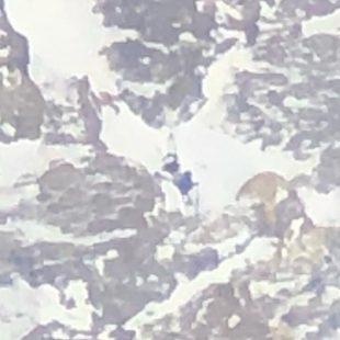 En esta foto hecha con el telescopio por Alex Txikon y su equipo es visible Daniele Nardi -en la parte superior izquierda -chaleco naranja-, Tom Ballard en el medio -chaleco azul- y la tienda un poco más abajo de Tom